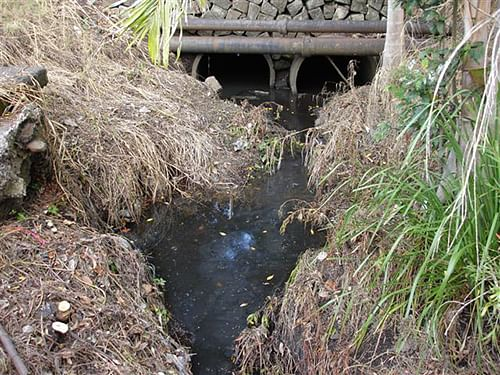 Gas Works Creek