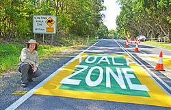 Slow down on the road and watch out for koalas during Spring